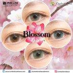 Blincon Blossom Grey