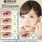 Blincon Blossom II Blue