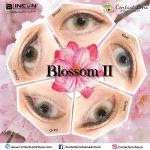 Blincon Blossom II Grey