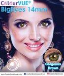 ColourVUE BigEyes 14mm Gorgeous Brown